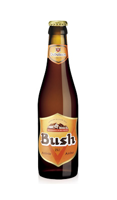 Bush ambrée 33 cl Image